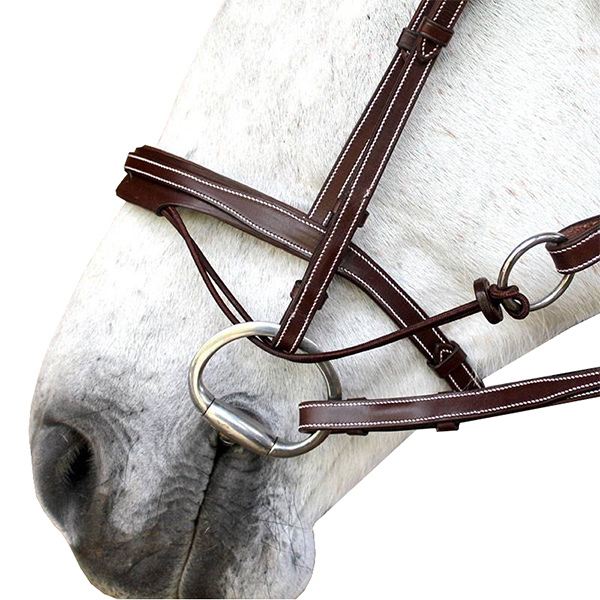 SC_0016_N08-Valla-noseband