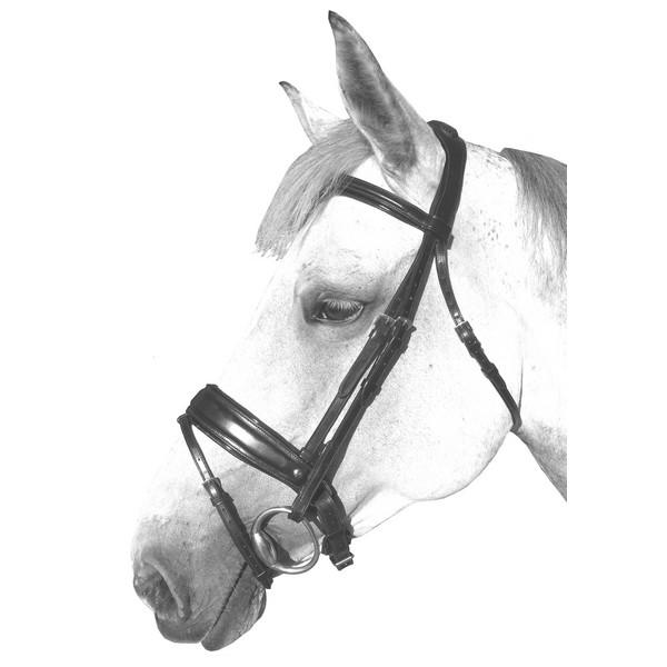 silver-crown_equestrian_dresage_bridle